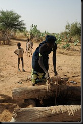 4b. fetching dirty water from well, Mali, near border