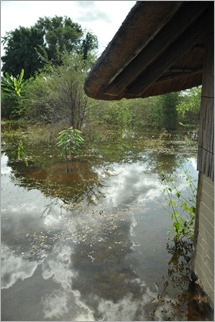 8b. Outside my room, Nunda Lodge, Kavango River  flooded